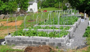 raised beds - high