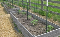 raised-beds-2