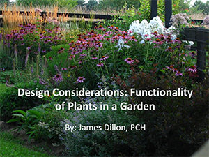 JDillon - Functionality of Plants Presentation